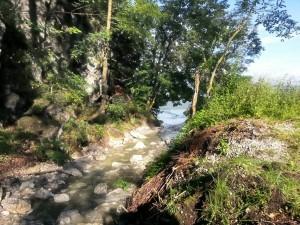 Ein naturbelassener Bach fließt durch den Campingplatz